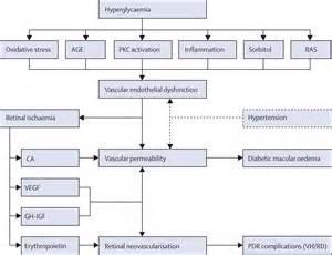 emedicine diabetic retinopathy picture 5