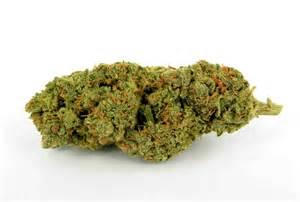 buy herbal haze online picture 10