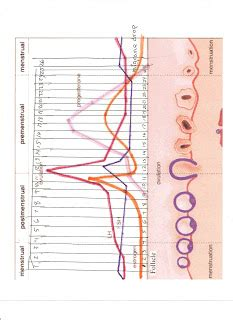 bioidentical hormones over counter picture 7