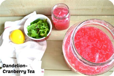 dandelion tea recipe picture 1