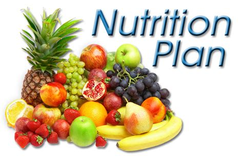 ageing nutrients picture 21