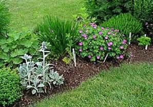herbal garden picture 15