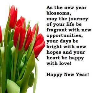 new year ki party kha hai picture 5
