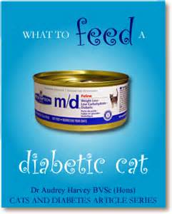 diabetic cat food dry picture 7