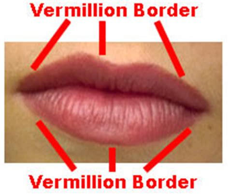 Thin vermition of the lips picture 6