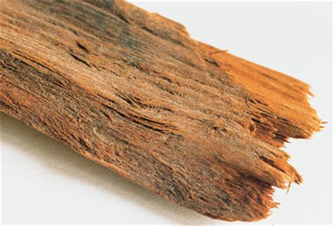 congolese herbs for erection picture 5