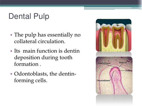 idiopathic human tet with teeth decay picture 1