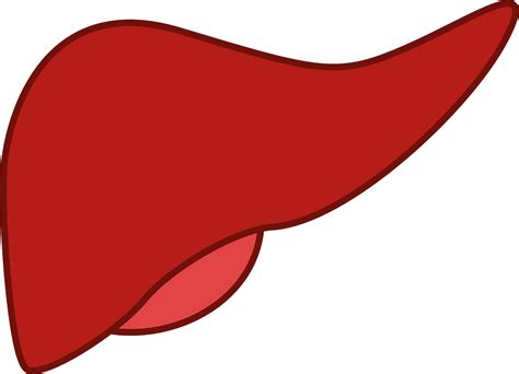 signs of liver cancer picture 5