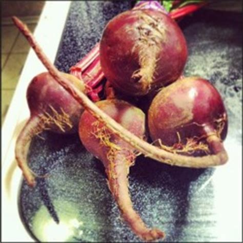 beets for male picture 1