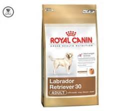 epilepsy royal canin picture 3