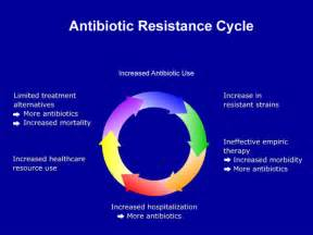 bacterial resistance picture 5