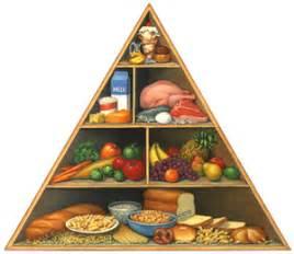 diet 7.0 online picture 18