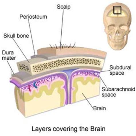 subdural skin irritations picture 6