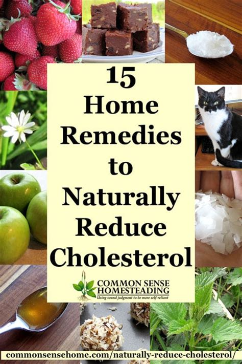 Natural cholesterol remedies picture 10