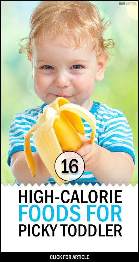 diet ideas for picky preschoolers picture 2