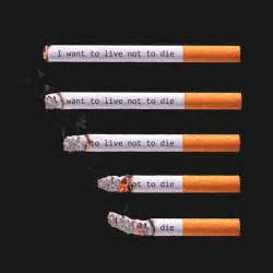 help to stop smoking in lisle il picture 4