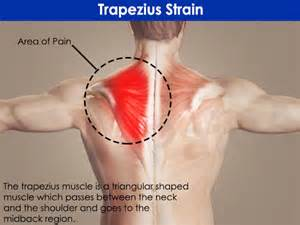 causes of lower back muscle spasms picture 7