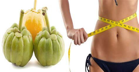 is garcinia cambogia safe with herpes picture 7