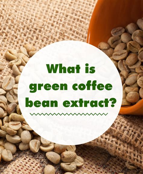 green coffee bean extract ncbi picture 6