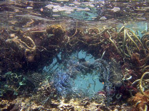 marine debris picture 2