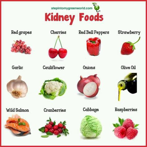 chronic renal failure diet picture 7