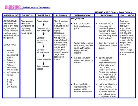 vehicular accident nursing care plan picture 6