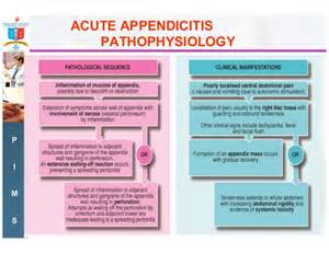 ncbi.acute appendicitis in pregnancy picture 11