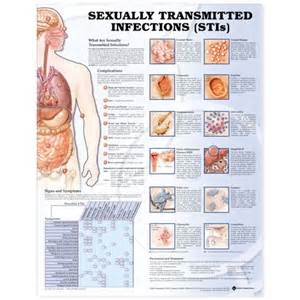 sexually transmitted disease genital warts picture 1