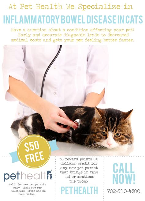 inflammatory bowel disease veterinary picture 3