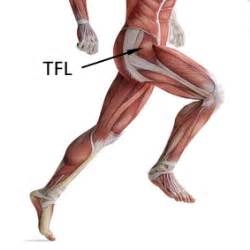 cure for muscle fasciae picture 14