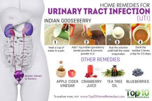 Herbal remedies for urinary tract infections picture 5