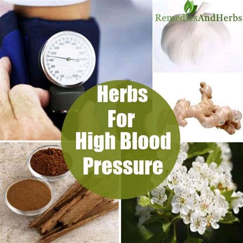 wiccan herbs for high blood pressure picture 5
