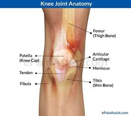 bursitis in many joints picture 18