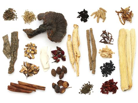 chinese herbal pills for ecoli picture 14