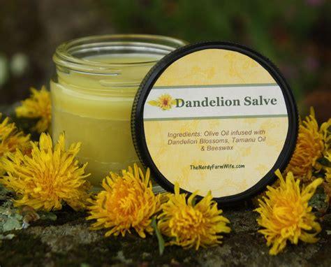 dandelion recipes picture 9