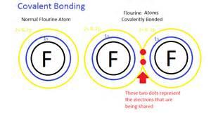 bonding picture 3