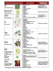 herbal medicines picture 19