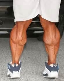 fat women muscle calves picture 18