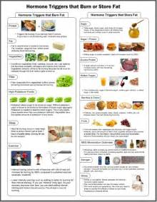 fat burning hormones diet picture 1