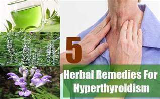 herbal remedies for hyperthyroidism picture 5