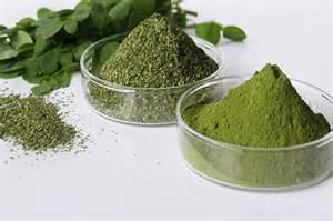 moringa leaf capsule picture 14