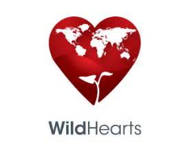 wildhearts jp bbs whbbs picture 2