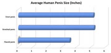 average penis size trinidad & too picture 6