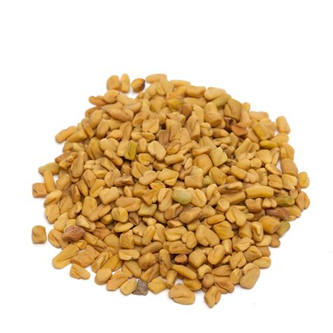 fenugreek picture 1