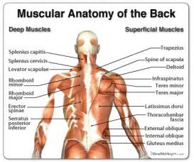 move neck and have middle back pain picture 9