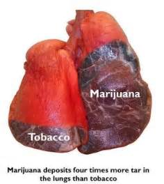 what can marijuana smoke to to a picture 5