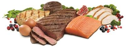all protean diet picture 7