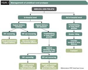 nursing care plan for uterine prolapse picture 6