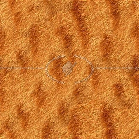 animal skin rugs picture 11
