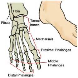 big toe metatarsal phalangeal joint foot sleeve picture 1